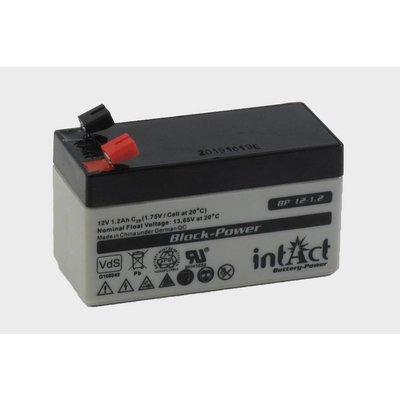 intAct BP 12-1,2 AGM