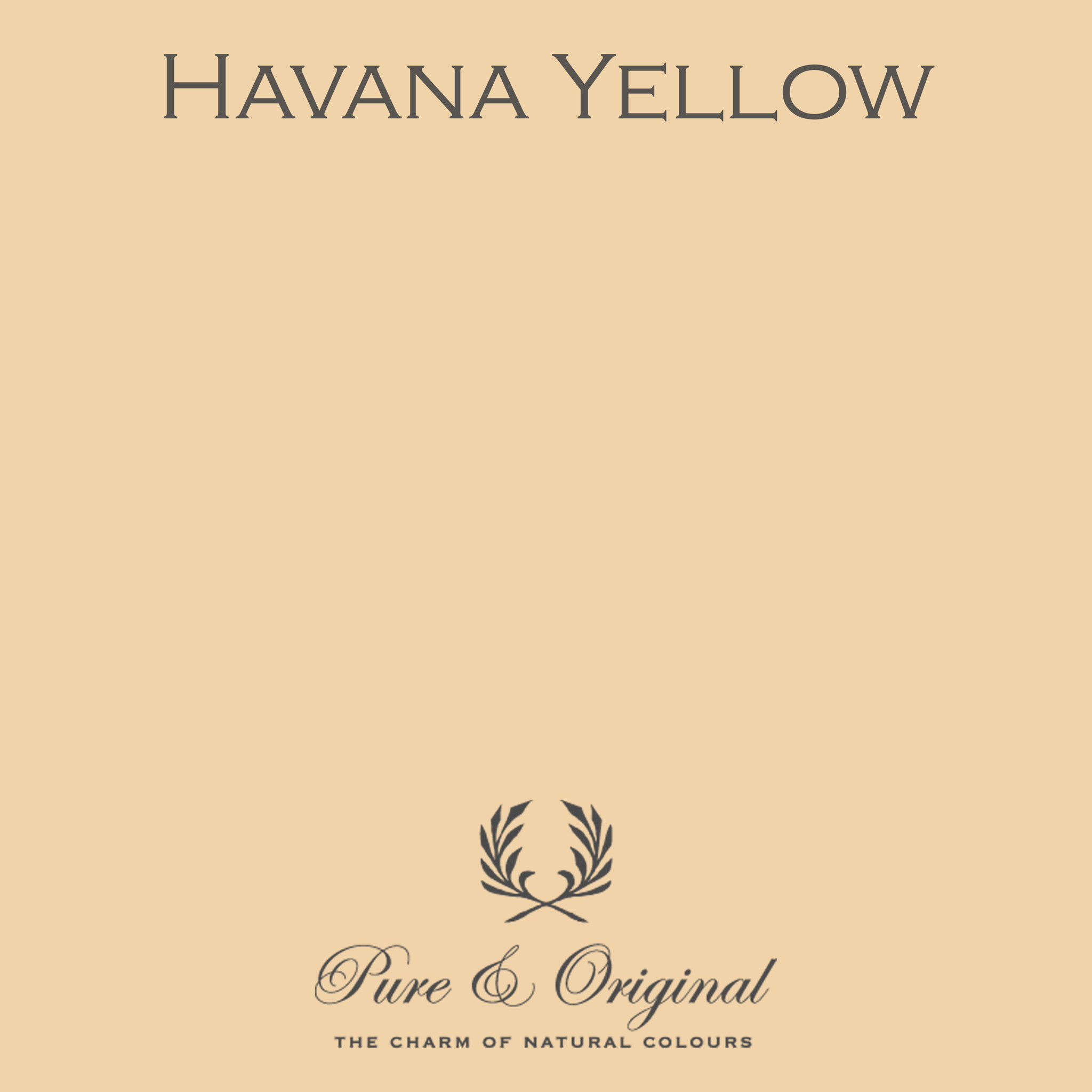 Traditional Paint Waterbased Havana Yellow