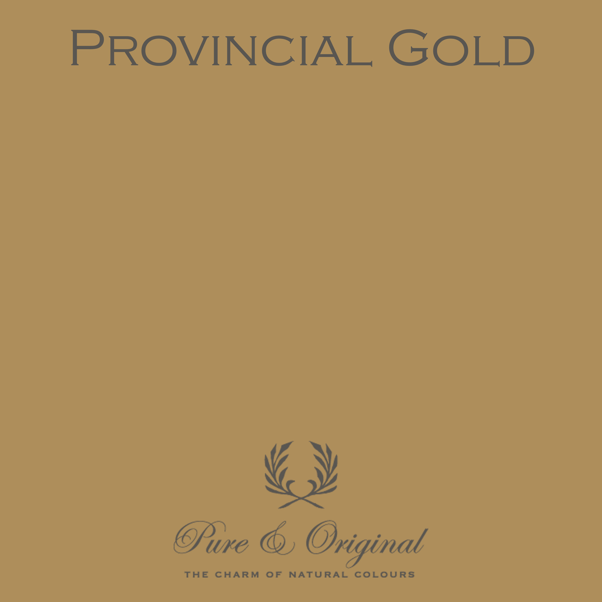 Traditional Paint Waterbased Provincial Gold