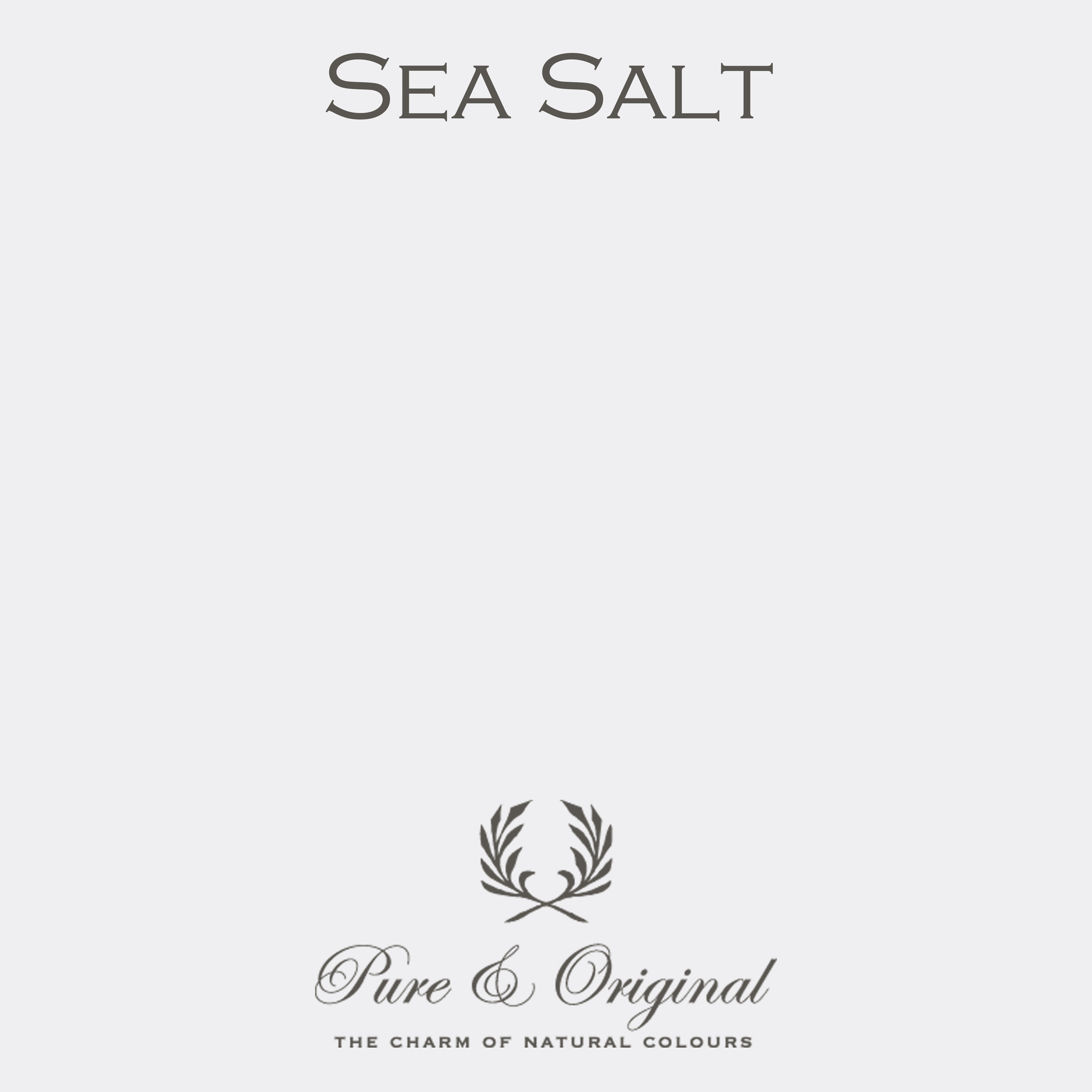 Traditional Paint Waterbased Sea Salt