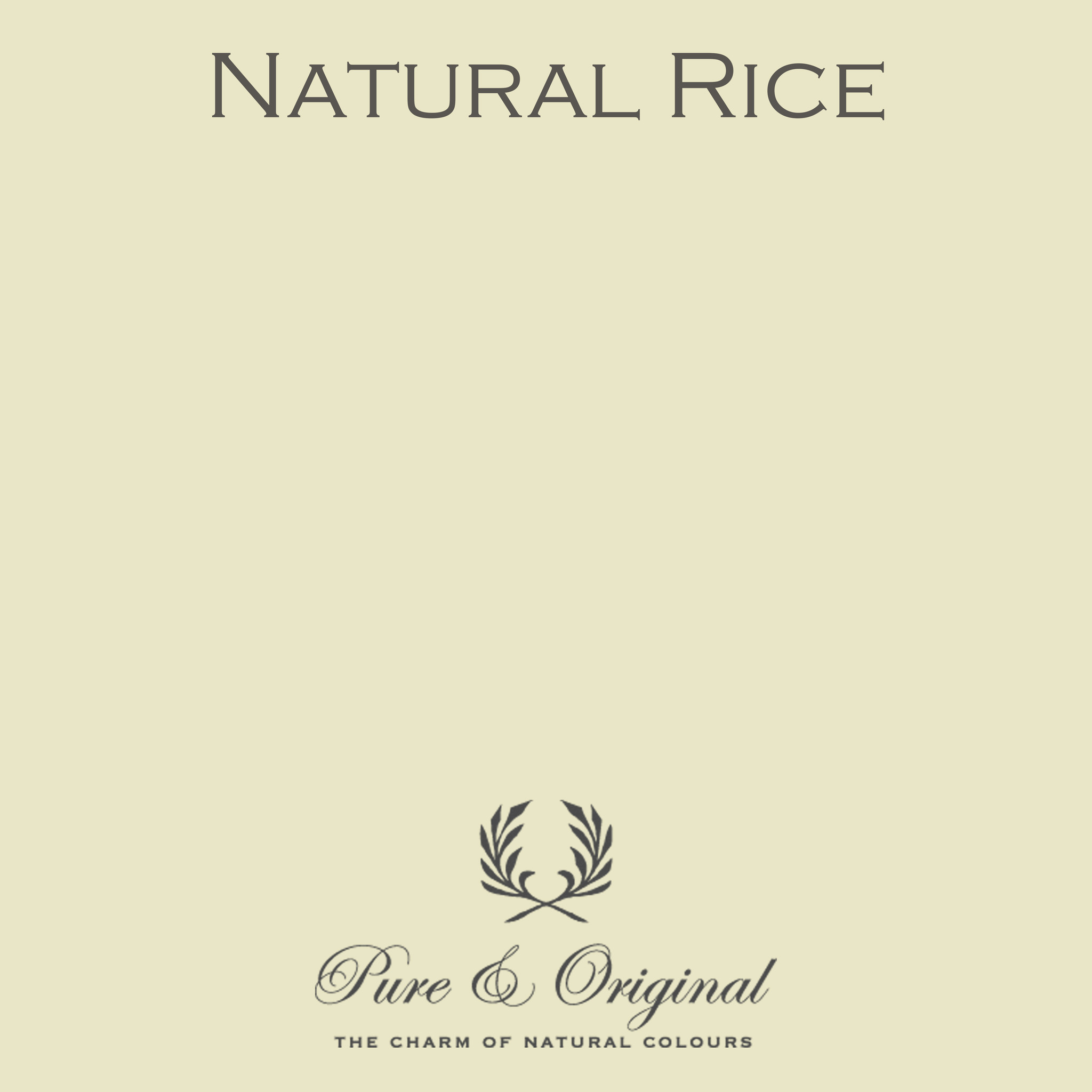 Traditional Paint Waterbased Natural Rice