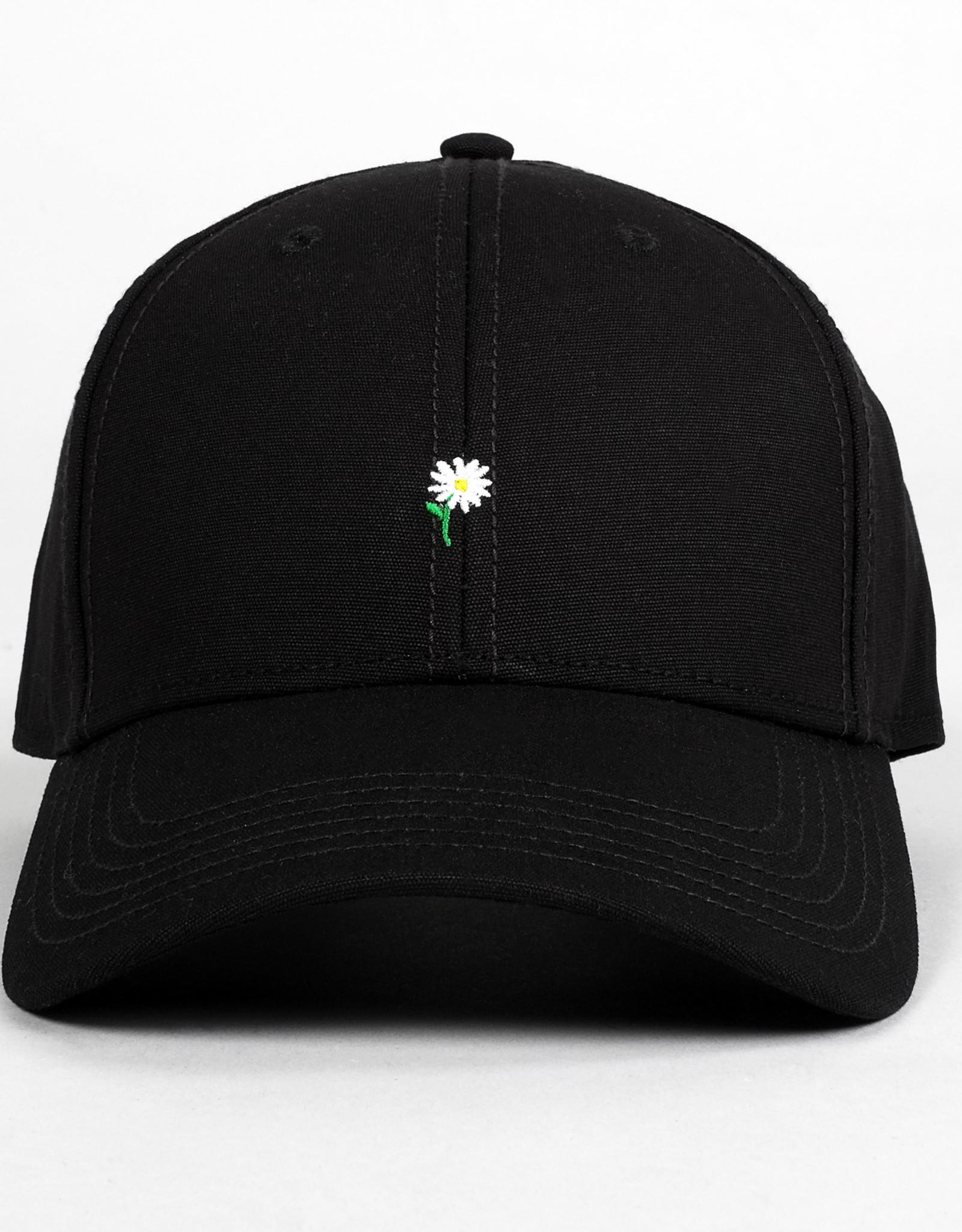 Dedicated PET SPORT FLOWER BLACK