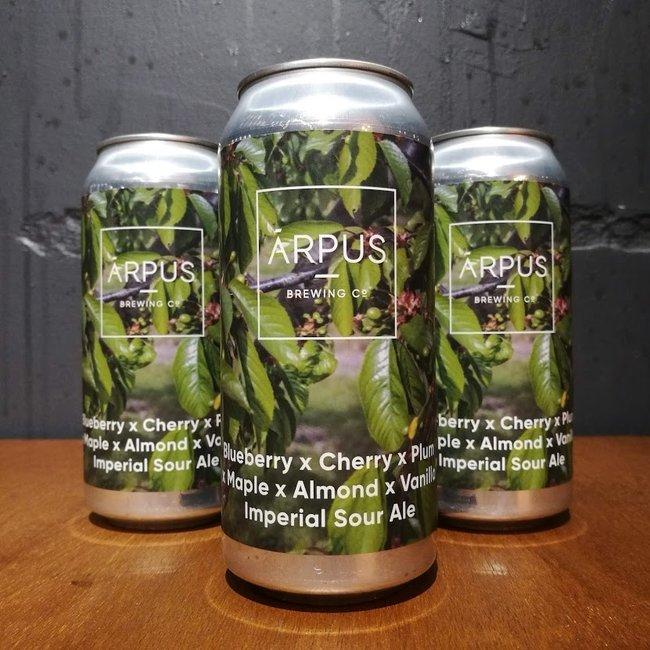 Arpus Brewing Blueberry Sour Ale