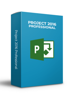 Microsoft Microsoft Project 2016 - Professional