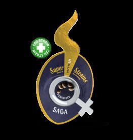 Superstrains Seeds Superstrains: Saga (CBD)