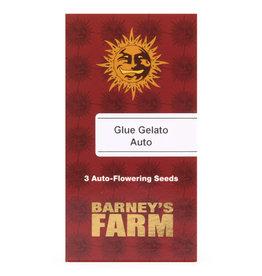 Auto Glue Gelato Barney's Farm 3 zaden