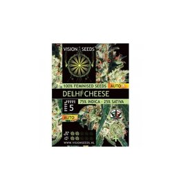 Auto Delhi Cheese Visionseeds 3 zaden
