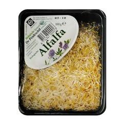 Kiemen Alfalfa Verpakt 90 gram