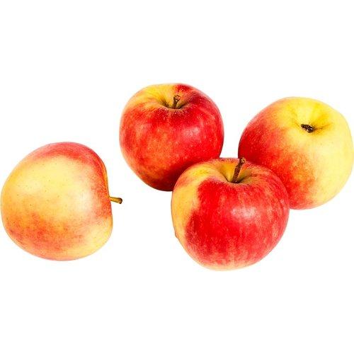 Elstar Appels ca 500 gram