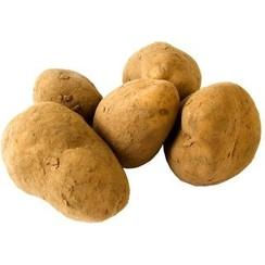 Aardappelen Kruimig ca 1 kg