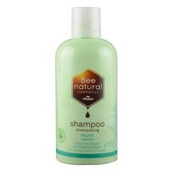 Shampoo Munt 250 ml
