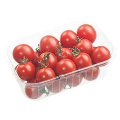 Cherry Tomaten 250 gram