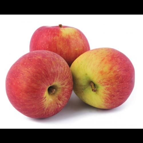 Jonagold Appels ca 500 gram