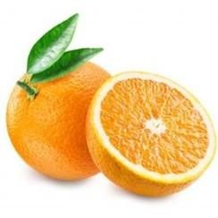 Valencia Sinaasappels 1 kilo