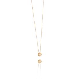 LOTT. Gioielli LOTT. Zodiac Collection ketting Vissen Small Rosé Gold Plated
