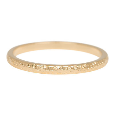 iXXXi Jewelry iXXXi vulring 2 mm Dancer Gold Plated R02807-01
