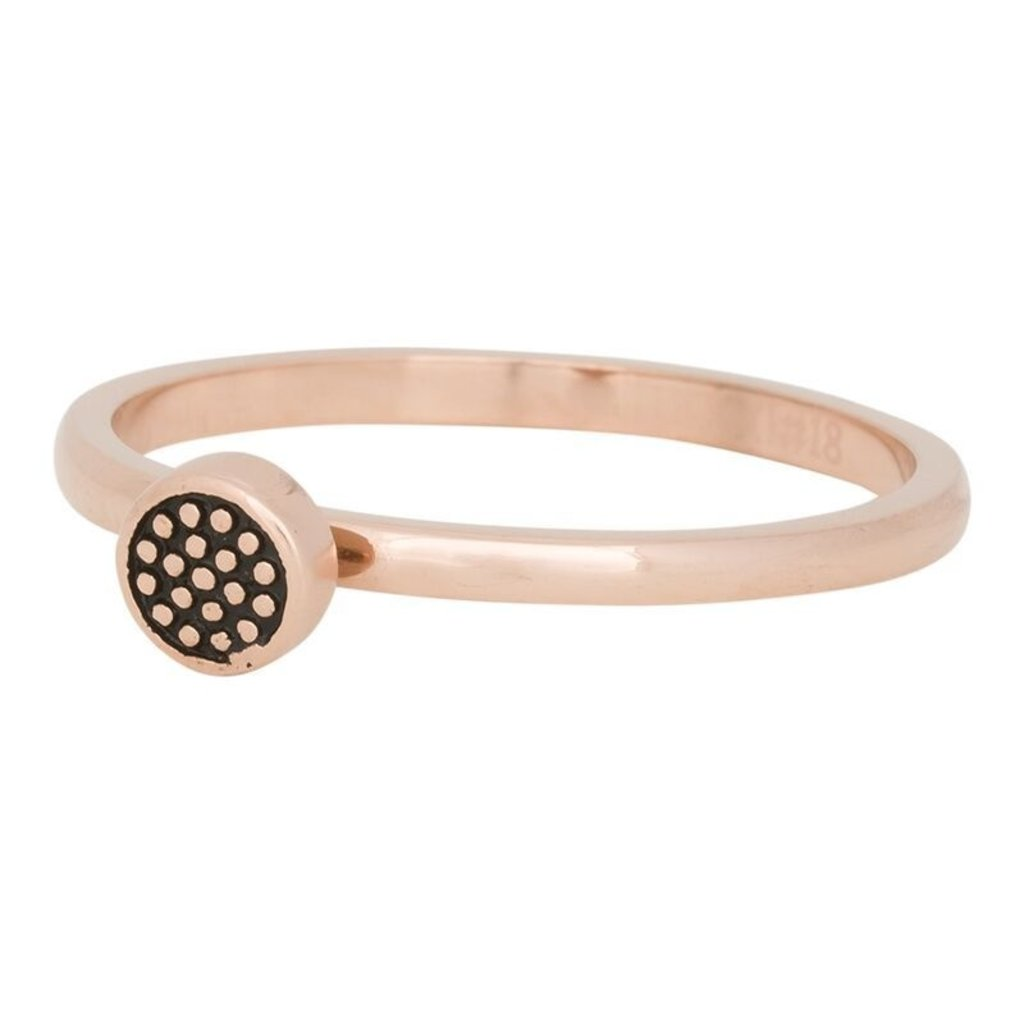 iXXXi Jewelry iXXXi vulring 2 mm Pin Cushion Rosé Gold Plated R04206-02