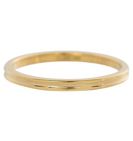 iXXXi Jewelry iXXXi vulring 2 mm Small Ribbed Gold Plated R02302-01