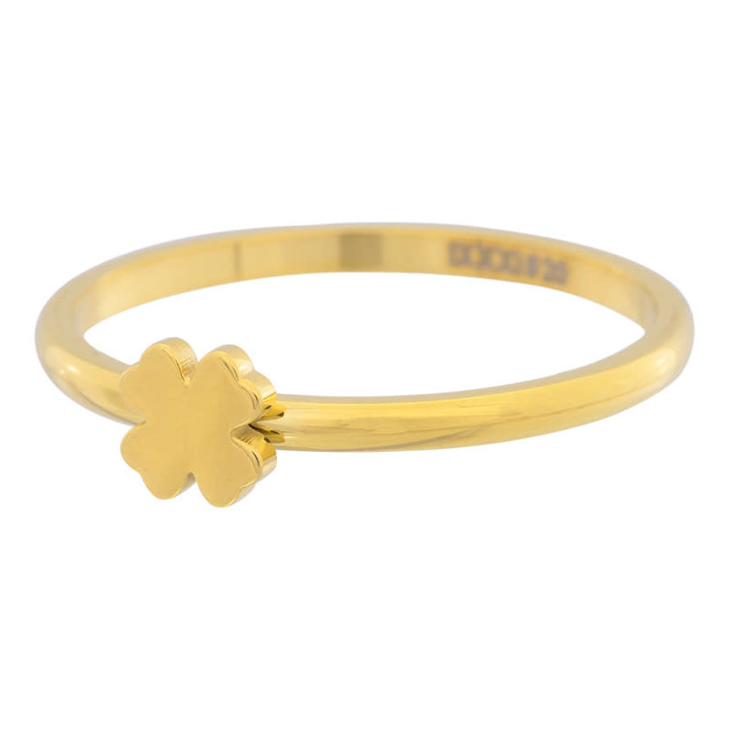 iXXXi Jewelry iXXXi vulring 2 mm Symbol Clover Gold Plated R03502-01