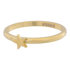 iXXXi Jewelry iXXXi vulring 2 mm Symbol Star Gold Plated R03504-01