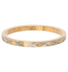 iXXXi Jewelry iXXXi vulring 2 mm X Row Gold Plated R02817-01