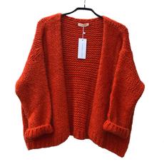 Alexandre Laurent Alexandre Laurent vest Pull Mohair Dark Orange