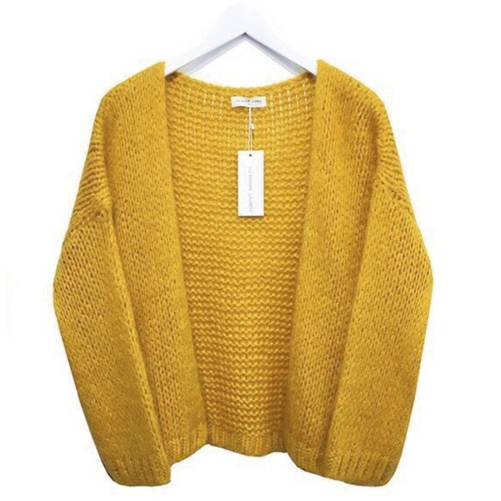Alexandre Laurent Alexandre Laurent vest Pull Mohair Yellow