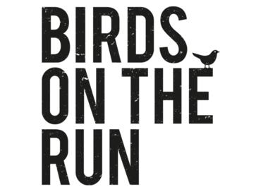 Birds on the Run