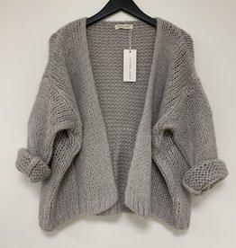 Alexandre Laurent Alexandre Laurent vest Pull Mohair Light Grey