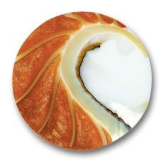 Mi Moneda Mi Moneda munt Nautilus Deluxe Orange M