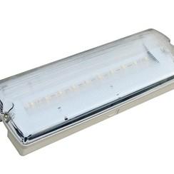 Noodverlichting | 3,3 Watt | 95 Lumen | 240 Volt (2 jaar garantie)