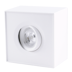 Ceiling Light | 9W | 40° | Flame dimming 2000~2800K | White