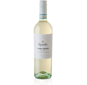 Riondo Pinot Grigio-Riondo