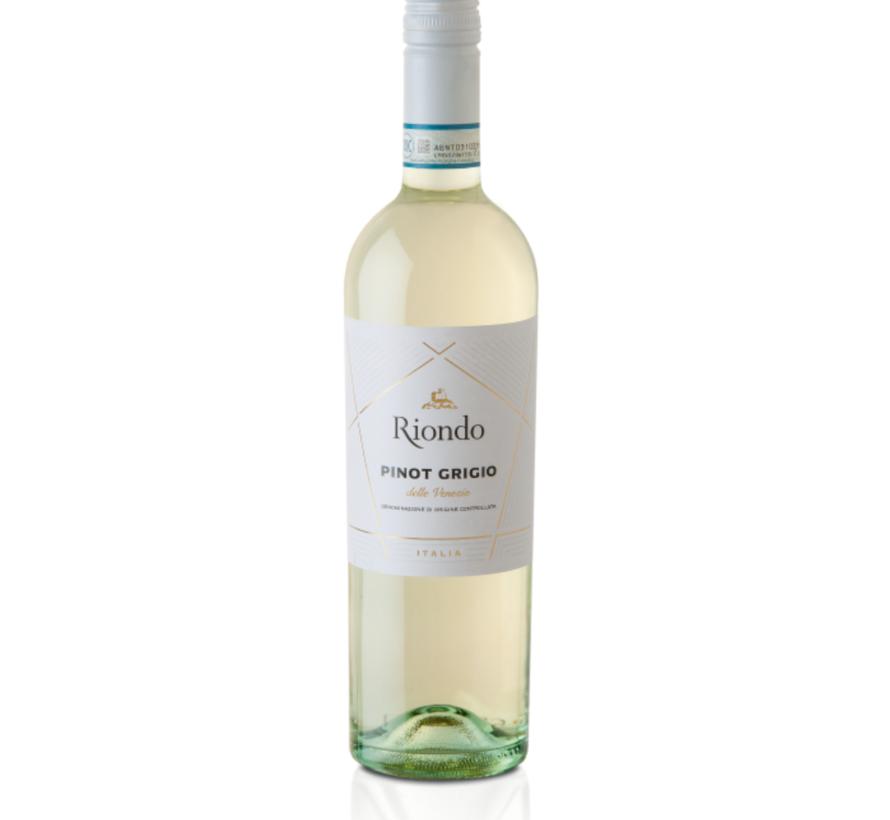 Pinot Grigio-Riondo