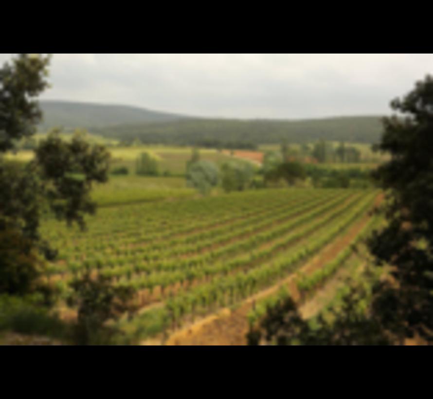 Chardonnay de Menilmontant
