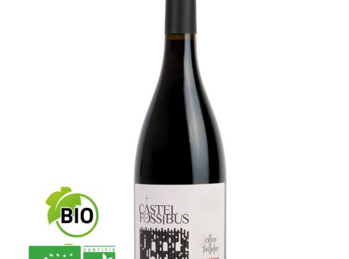 Domaine Ollier Taillefer Castel Fossibus rode wijn