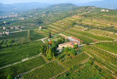 Olijven, Truffels en Valpolicella