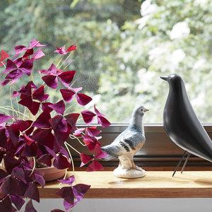 Vitra Vitra Eames House Bird