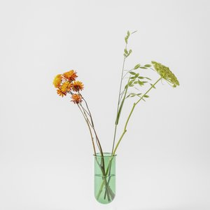 About Form And Function Flower Tube green low