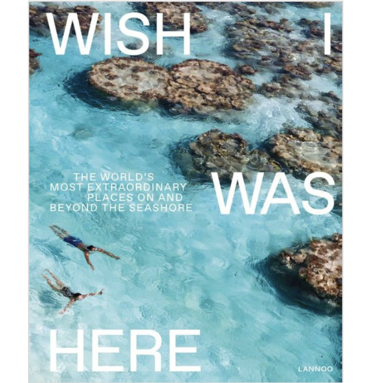 Book Wish I was here