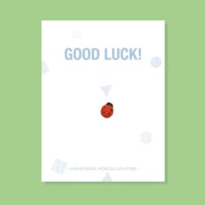 Stook Stook pin Ladybug