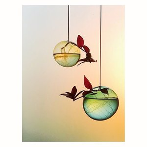 Studio About Flower Bubble hanging small amber