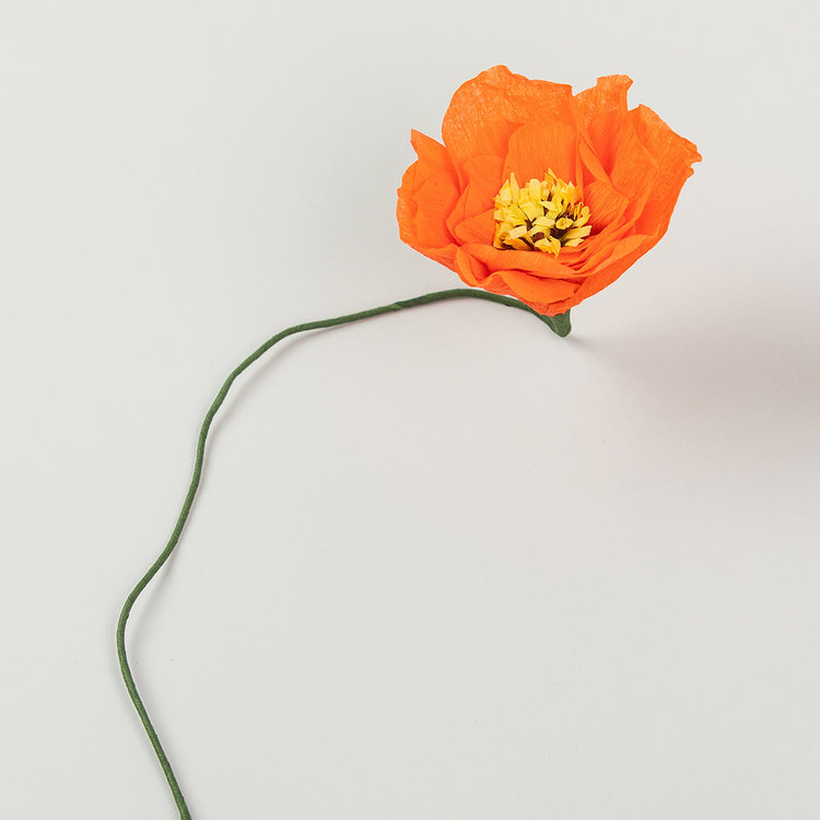 Studio About Paper flower Poppy red