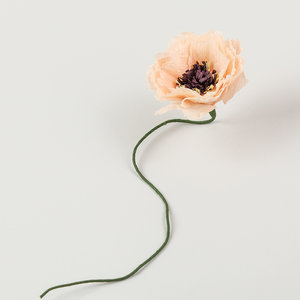 Studio About Paper flower Peony nude