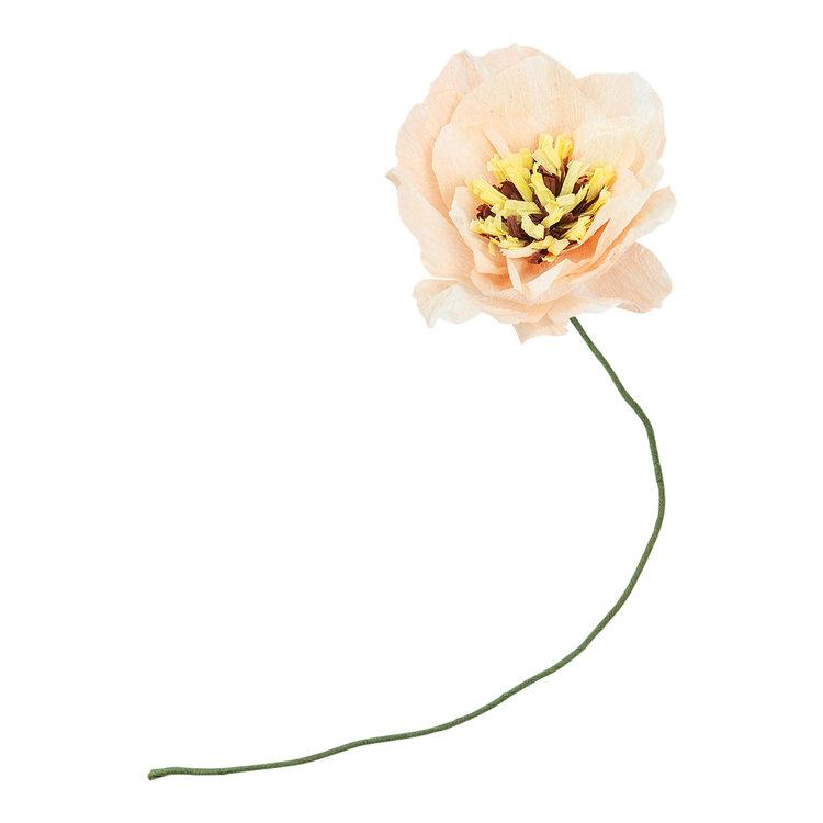 Studio About Paper flower Poppy nude