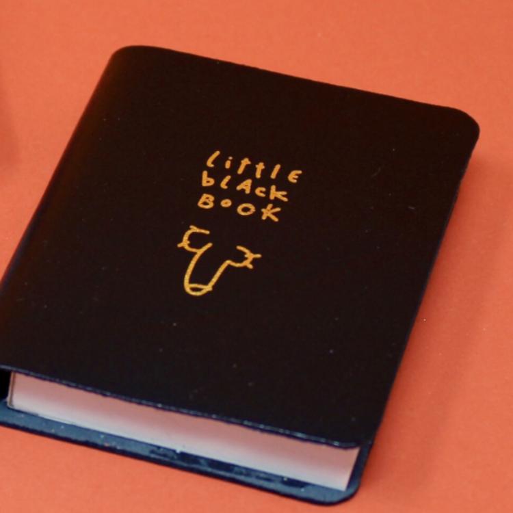 ARK Little Black Book Willy