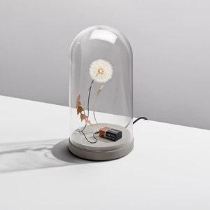 Studio DRIFT Lamp Dandelight with dome