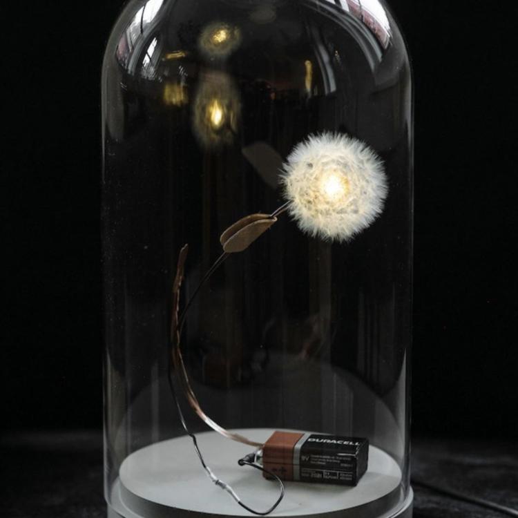 Studio DRIFT Studio Drift lamp Dandelight