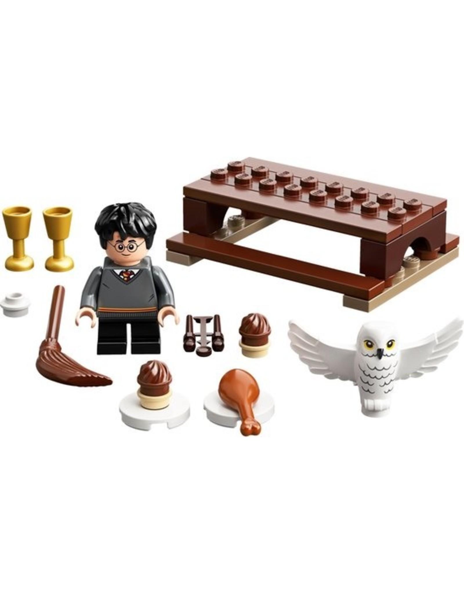 LEGO  LEGO Harry Potter 30420 Harry Potter en Hedwig (polybag)