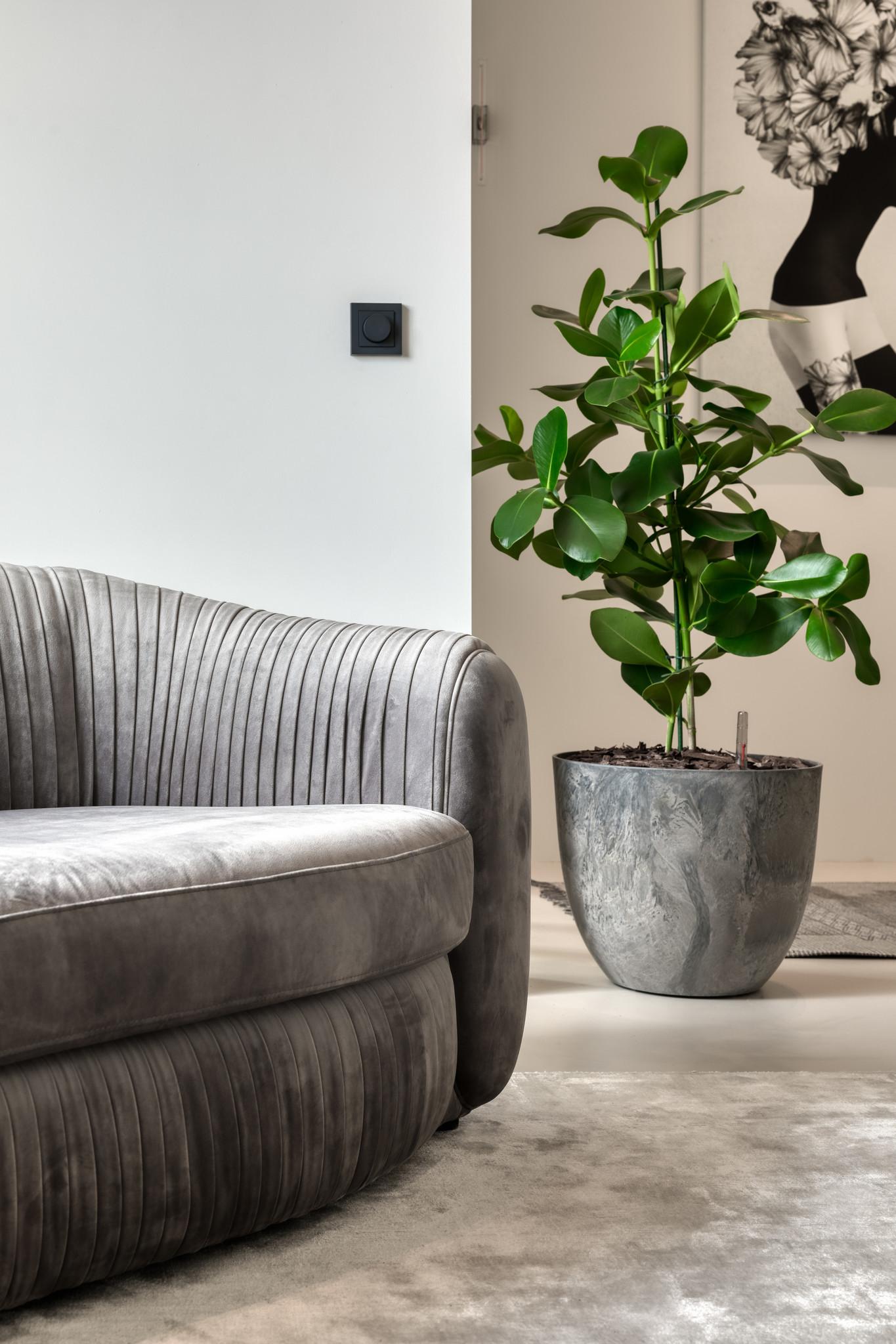 UFFIZI Sofa Dove Grey Velvet-3